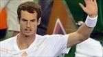 Manchester United 'giành' nhà tài trợ của Andy Murray