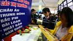 Nâng cao chất lượng nguồn lao động xuất khẩu
