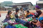 Mùa xuân ấm no với người Mông ở Đắk Nông