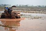 Miễn hơn 55,6 tỷ đồng phí thủy lợi cho nông dân