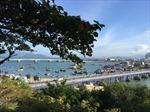 Không khí đón Tết tại Nha Trang