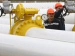 Nga cảnh báo ngừng cung cấp khí đốt cho Ukraine