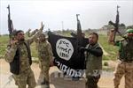 Bosnia-Herzegovina viện trợ 500 tấn đạn cho Iraq chống IS