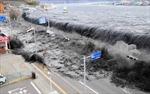 Ký ức kinh hoàng thảm họa sóng thần Nhật Bản