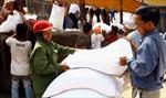 Quảng Bình phân bổ hơn 1.200 tấn gạo cứu đói