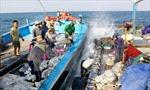 Đàm phán hợp tác cùng phát triển trên biển Việt - Trung