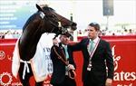 Ngựa của Michael Owen vô địch Dubai Gold Cup
