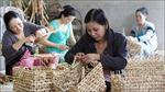 Tỷ lệ hộ nghèo Hà Nội giảm mạnh