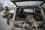Giao tranh tại Đông Ukraine đang leo thang