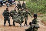 Thế giới ủng hộ tiến trình hòa đàm ở Colombia