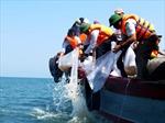 Quảng Bình thả hàng trăm con tôm hùm về biển