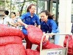 Thanh niên TTXVN giúp nông dân tiêu thụ hành tím