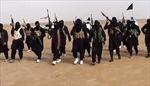 Mỹ treo thưởng lớn bắt 4 thủ lĩnh IS