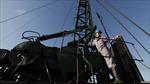 Cuba cung cấp thông tin trữ lượng dầu khí cho Mỹ