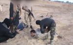 IS tung video tấn công quân đội Ai Cập ở Bắc Sinai