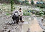 Loay hoay thoát nghèo ở Nậm Củm