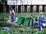 TP.HCM: Nhiều kênh rạch ô nhiễm nghiêm trọng