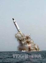 Triều Tiên tuyên bố đã thu nhỏ được đầu đạn hạt nhân