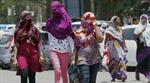 Nắng nóng làm 800 người tử vong ở Ấn Độ