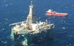 Anh tìm thấy dầu mỏ tại quần đảo tranh chấp với Argentina