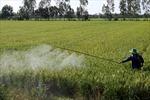 Ô nhiễm đất do hóa chất nông nghiệp