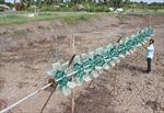 Bất cập hệ thống thủy lợi nuôi tôm ở ĐBSCL