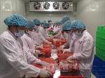 Quả vải Việt Nam vào thị trường Canada