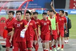 Kế hoạch dự vòng loại World Cup 2018 và chung kết U23 châu Á 2016