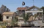 Syria chuẩn bị giải phóng Palmyra từ tay IS