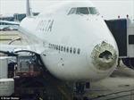 Máy bay chở khách 'tơi tả' vì mưa đá