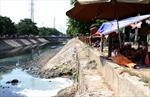 Hà Nội mất dần những dòng sông xanh - Kỳ 2