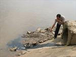 Báo động ô nhiễm sông Sài Gòn