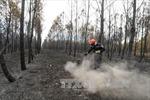 Pháp sơ tán 10.000 người cắm trại do cháy rừng tại Provence