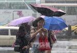 Hơn 20 người bị thương do bão Dujuan