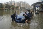 Bão Mujigae tràn vào miền Nam Trung Quốc