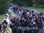 Tuần hành tại Đức lên án kỳ thị người nước ngoài