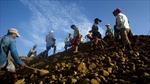 Lở đất khủng khiếp ở mỏ ngọc Myanmar, 90 người chết