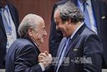 Thụy Sĩ cung cấp thông tin giúp điều tra bê bối FIFA