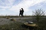 Đông Ukraine nhất trí ngừng bắn dịp Năm Mới