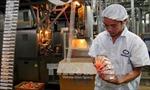 Doanh nghiệp sữa có thể không bị truy thu hàng trăm tỷ đồng tiền thuế