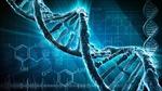 Anh thử nghiệm phương pháp sửa lại gien khuyết tật trong phôi thai người