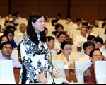Thúc đẩy phụ nữ tham gia Quốc hội, HĐND