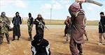 Ngoại trưởng Mỹ tuyên bố IS phạm tội diệt chủng