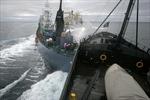 Tàu cá Trung Quốc và tàu nước ngoài đâm nhau trên biển Hoa Đông