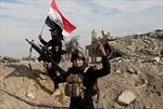 """Mỹ tiêu diệt 2 """"mục tiêu có giá trị cao"""" của IS"""