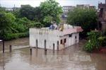Mưa bão gây thiệt hại nặng cho Ấn Độ, Trung Quốc