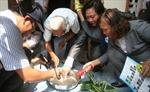 Đã có 3 ca nhiễm virút Zika tại Việt Nam