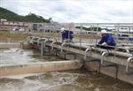 Hoàn thành Nhà máy xử lý nước thải KCN Điềm Thụy