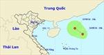Áp thấp nhiệt đới gây gió giật cấp 8