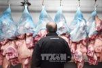Nga có thể bán thịt lợn cho Việt Nam từ 2017